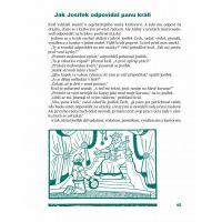 Pohádkové dárky Josefa Lady - 3. vyd. - Paul Tobin, Ron Chan 4