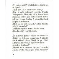Sísa Kyselá a ušmudlaný rytíř - Martina Drijverová, Adolf Born 2