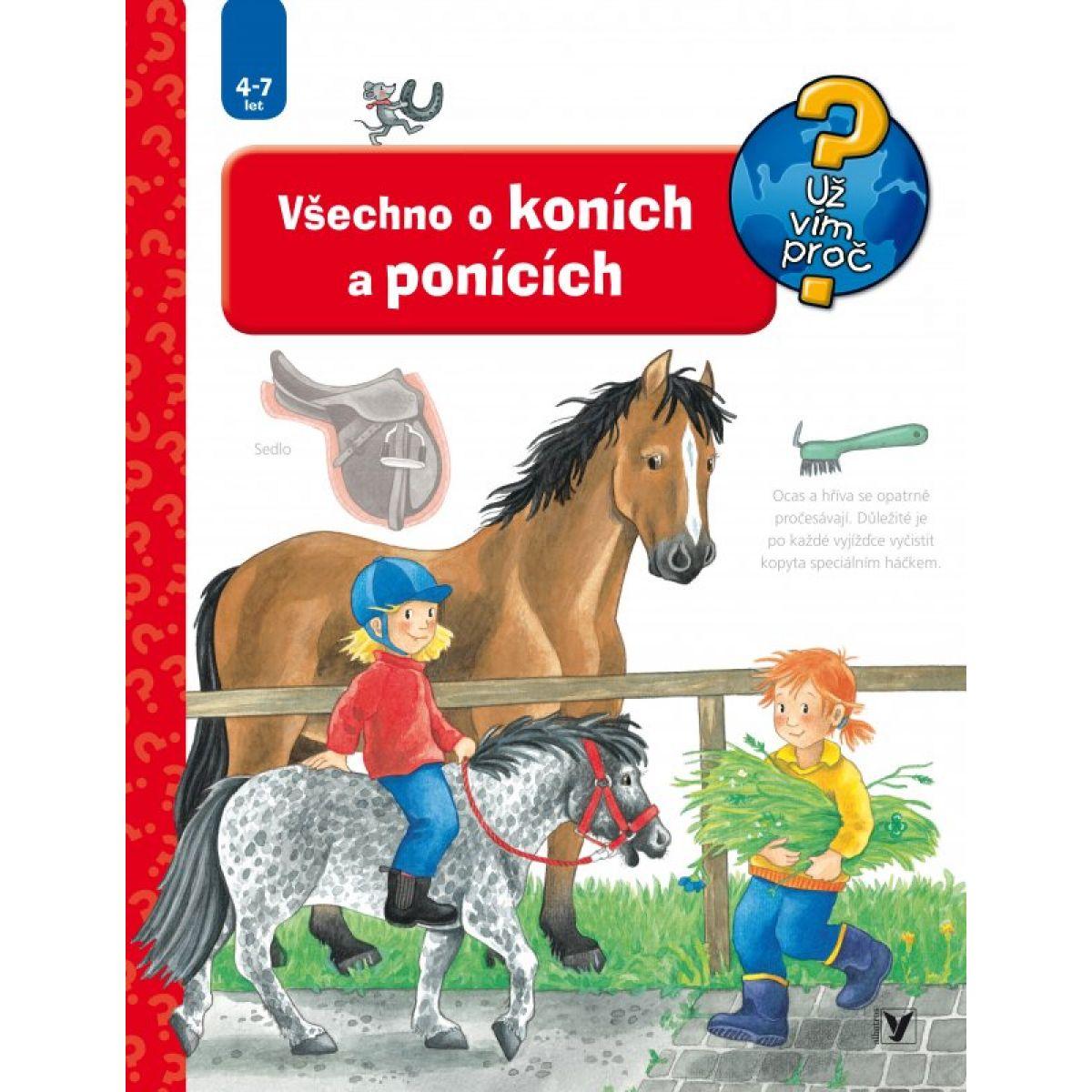 Všechno o koních a ponících - 2. vyd. - Andrea Erne, Irmgard Eberhard