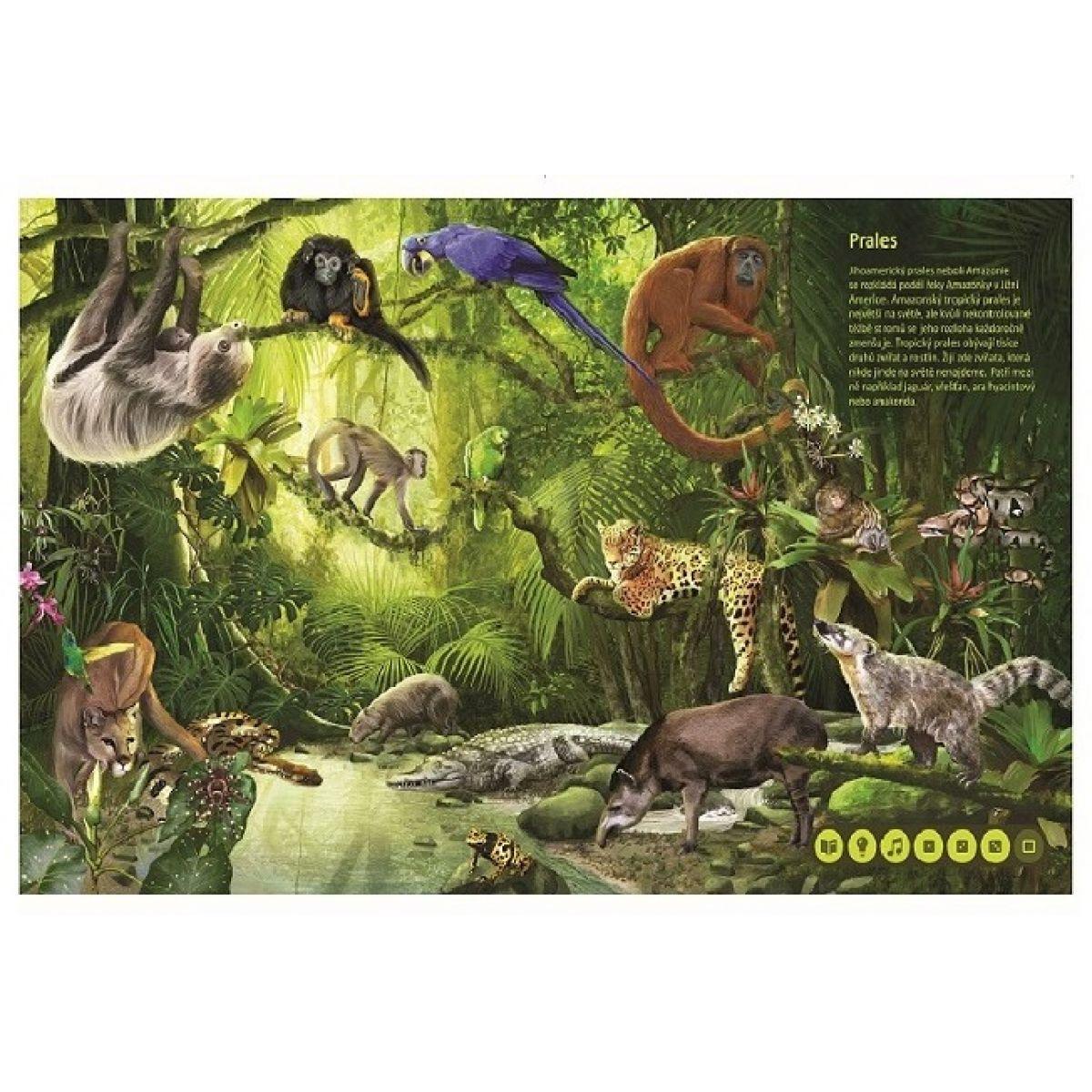 15693904d Albi Kúzelné čítanie Svet zvierat | 4kids
