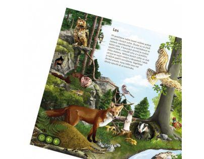 Albi Kúzelné čítanie Svet zvierat