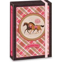 Ars Una Box na zošity Charming Stars kone A4