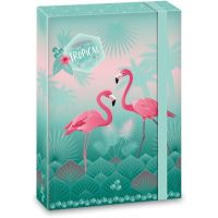 Ars Una Box na zošity Pink Flamingo A4