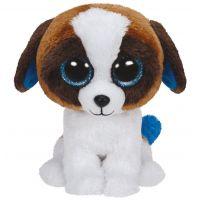 TY Beanie Boos Duke bielo hnedý pes 24 cm