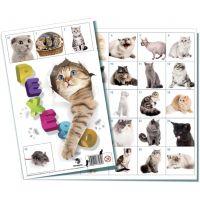 BONAPARTE Pexeso: Kočky