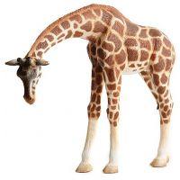 Bullyland 63668 Žirafa