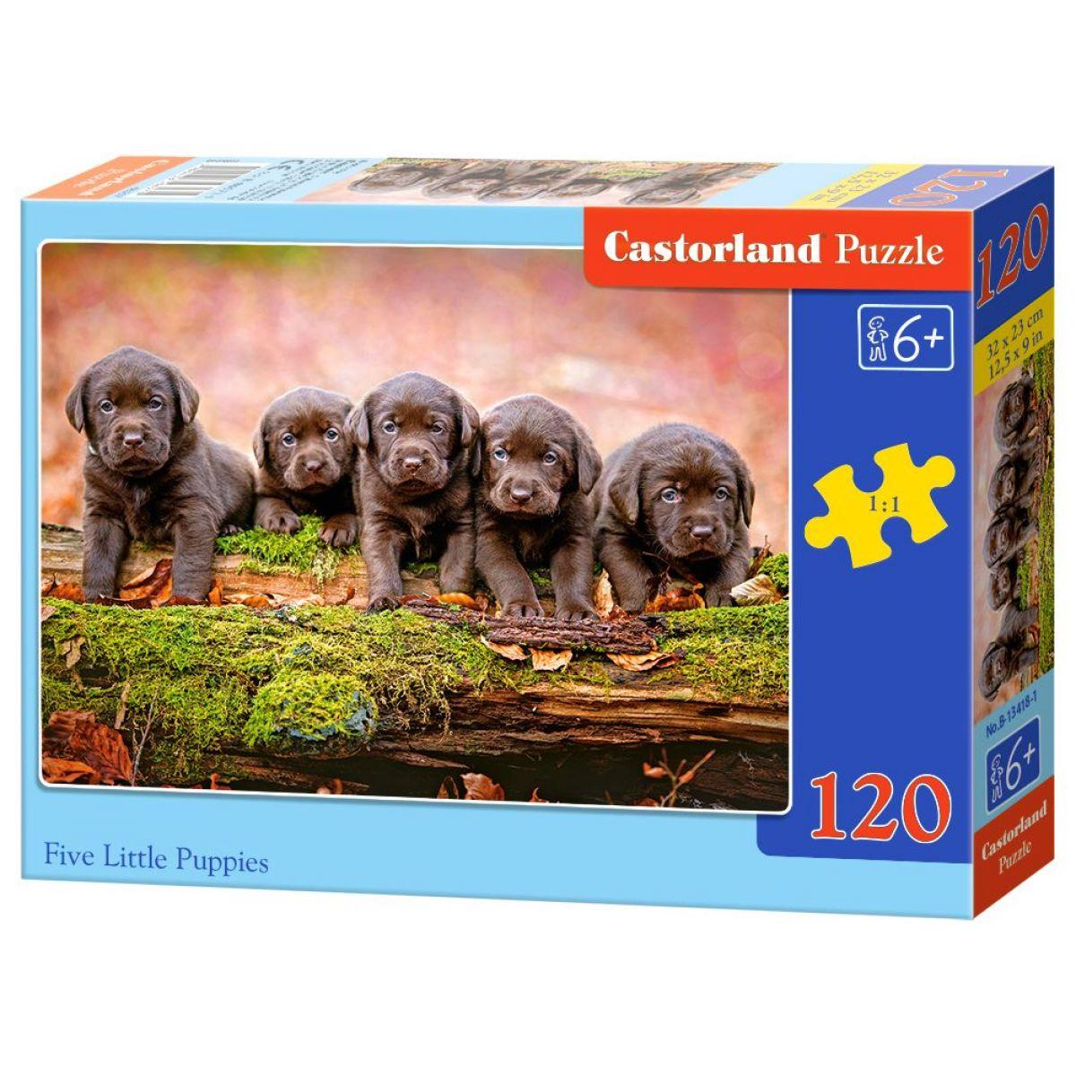 Castorland Puzzle 120 dielikov Päť šteniat labradora