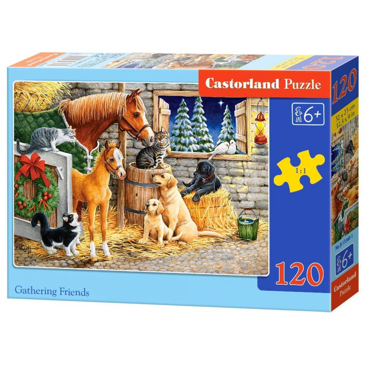 Castorland Puzzle 120 dielikov Stretnutie priateľov v stajni