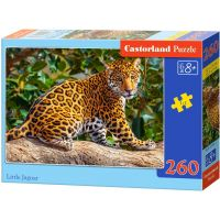 Castorland Puzzle Tři šedivá koťátka 260 dílků