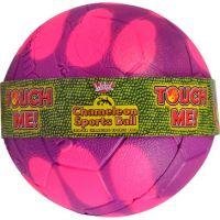 EP Line Chameleon Fotbalový míč 6 5 cm - Fialová