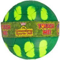 EP Line Chameleón futbalová lopta 6,5 cm
