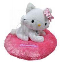 Charmmy Kitty na polštářku