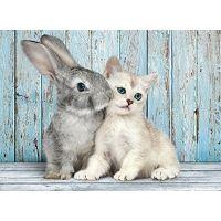 Clementoni Mačka s králikom 500 dielov 2