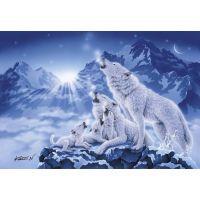 CLEMENTONI 1000 dielikov Rodina vlkov 2