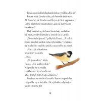 Víly Nevíly: Mezi světy - Kiki Thorpeová 2