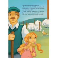 Nejkrásnější příběhy o koních - Evelyne Duverneová 2