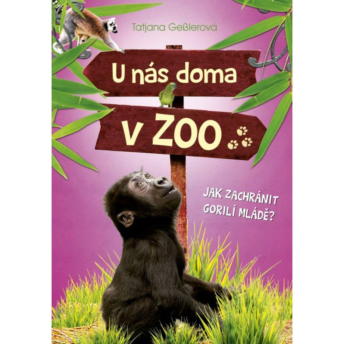 U nás doma v ZOO Ako zachrániť gorilej mláďa?