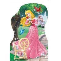 DINO WD Hravá princezná 4x54 dílků 3