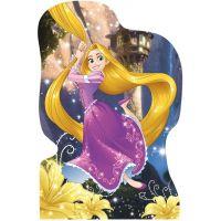 DINO WD Hravá princezná 4x54 dílků 5