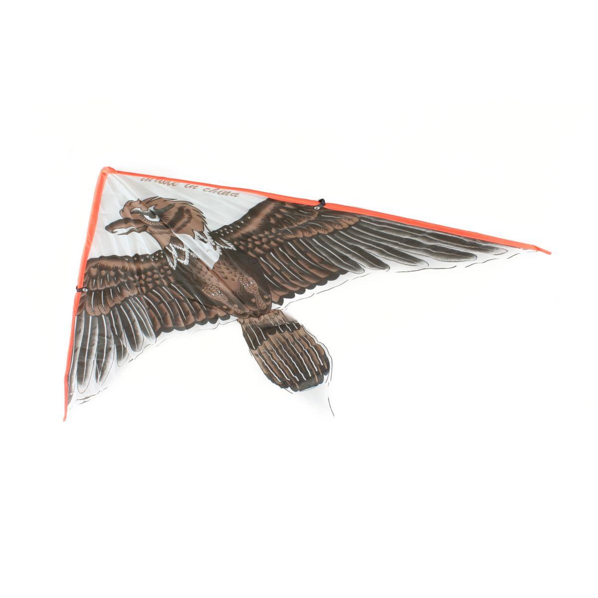 Drak lietajúci orol hnedý