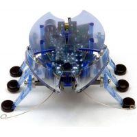 Hexbug Beetle - Modrá