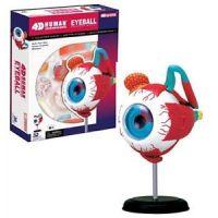 HM Studio Anatomie člověka oko - Poškodený obal  3