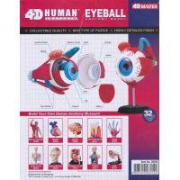 HM Studio Anatomie člověka oko - Poškodený obal  4