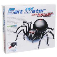 HM Studio Pavúk na slanú vodu 2