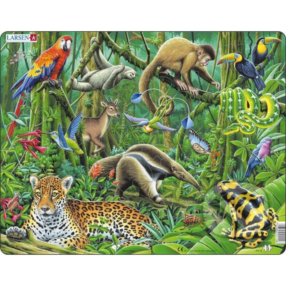 Larsen Puzzle Dažďový prales Južnej Ameriky