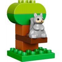 LEGO DUPLO 10832 Narodeninový piknik 3