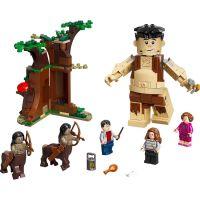 LEGO Harry Potter TM 75967 Zakázaný les: Stretnutie Grawpa s profesorkou Umbridgeovou