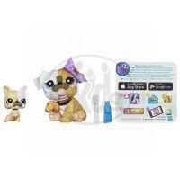 Littlest Pet Shop zvířátka - 3587 Buldog 3588 mládě 2