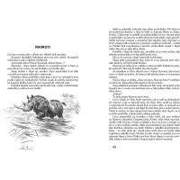 Lovci mamutov Eduard Štorch, Zdeněk Burian ilustrácie 2