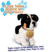 Made Pes Jack Russel interaktivní