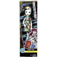 Mattel Monster High příšerka Frankie Stein 6