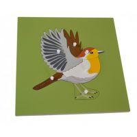 Montessori Vkládací puzzle s kostrou ptáka