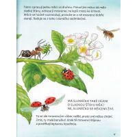Mravenci - Poškodený obal  4