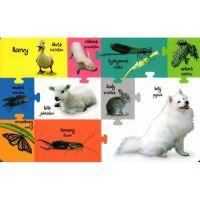 Obrázková knížka Zvířátka na statku 3