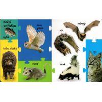 Obrázková knížka Zvířátka z lesa 2
