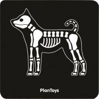 Plan Toys zverolekárske set 5
