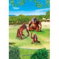 Playmobil 6648 Rodina orangutanov 2