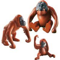 Playmobil 6648 Rodina orangutanov 3