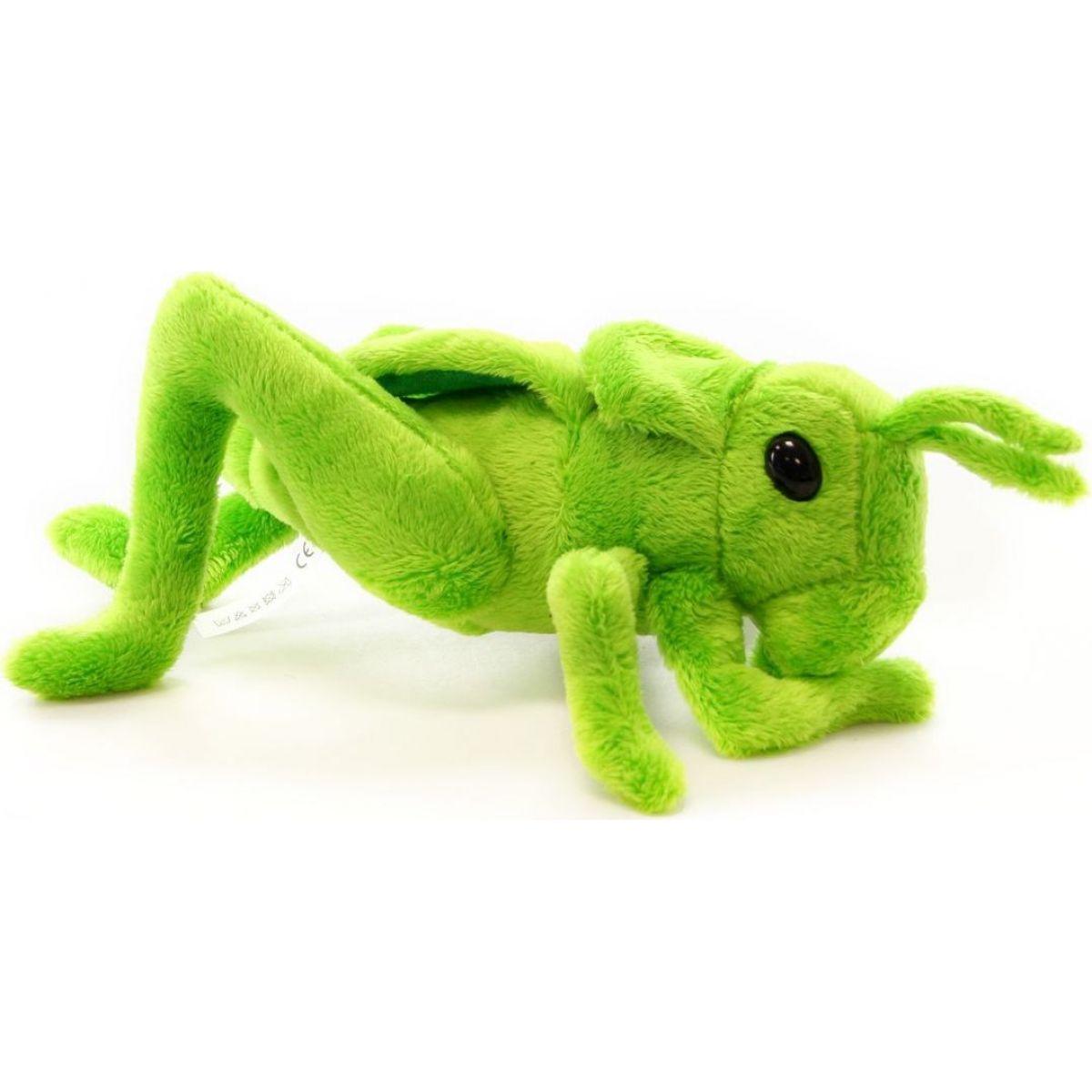 Lúčne kobylka