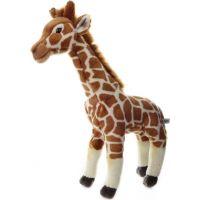 žirafa 55 cm