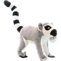 lemur 18 cm