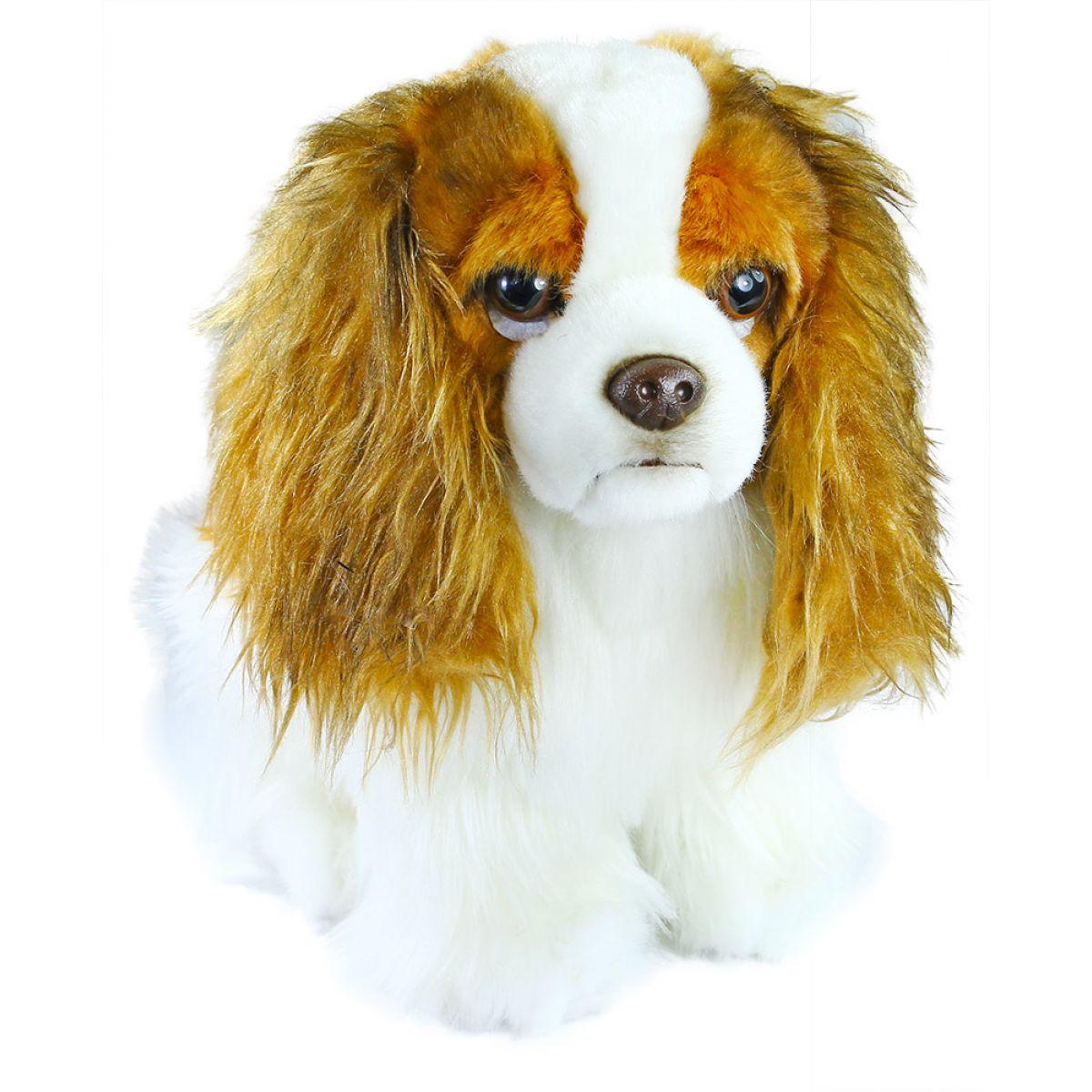 Rappa Plyšový pes King Charles Španiel 25 cm