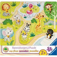 Ravensburger Puzzle 036875 Zoo zvieratá 8 dielikov 2