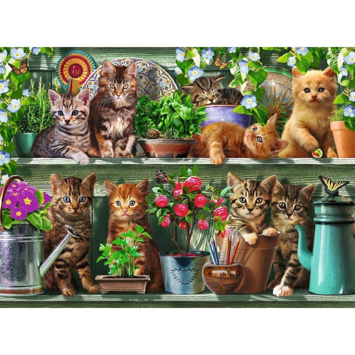Ravensburger puzzle 148240 Mačky na knižnici 500 dielikov