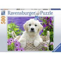 Ravensburger puzzle 148295 Roztomilý zlatý retriever 500 dílků