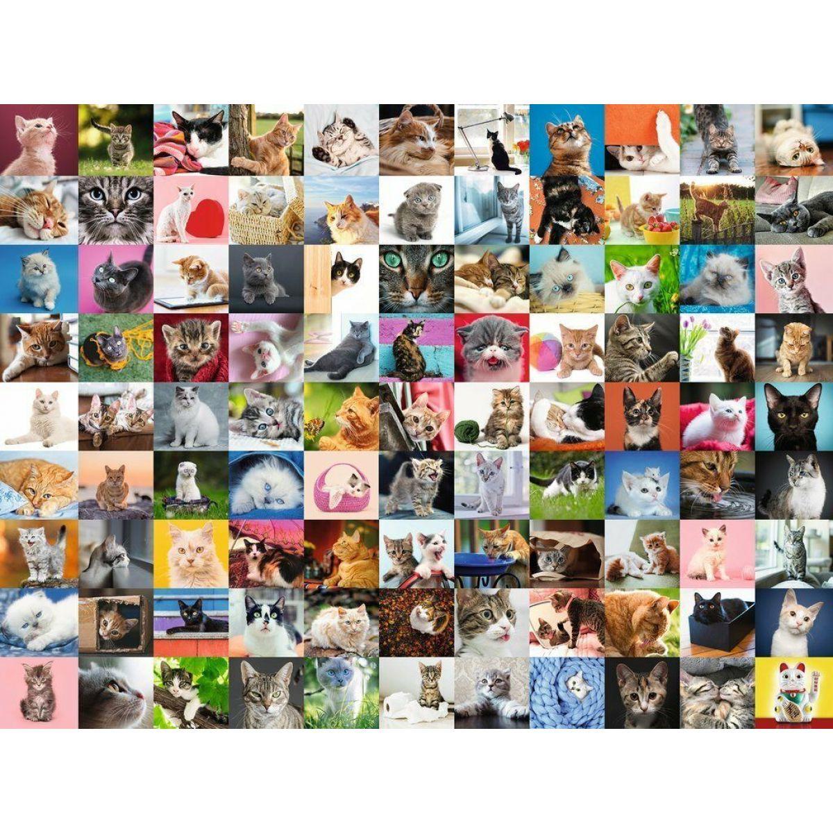 Ravensburger puzzle 162352 99 mačiek 1500 dielikov